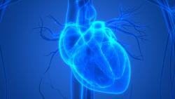 Une expérimentation pour améliorer le parcours des insuffisants cardiaques sévères